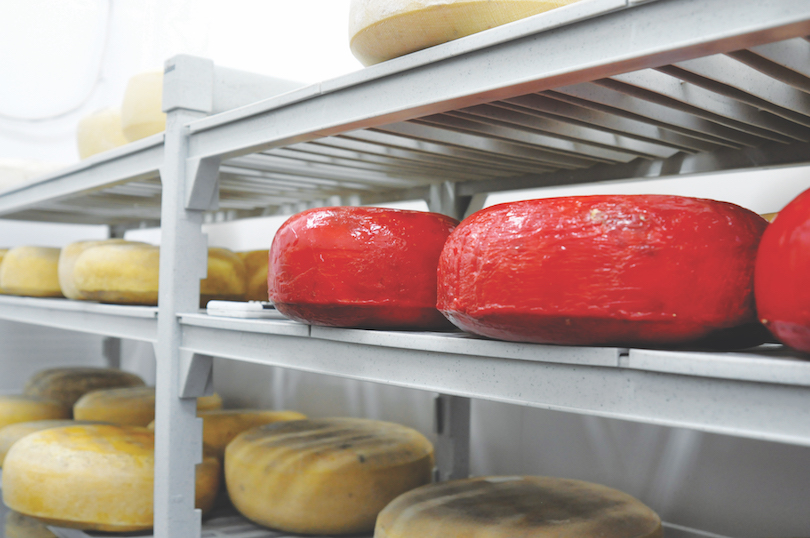 Nestucca Bay Creamery specializes in French style aged cheeses