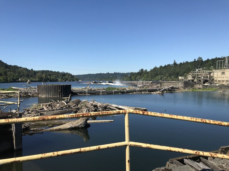 View of Willamette Falls