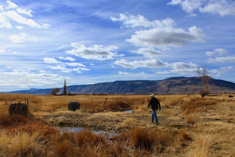 John O'Keeffe on his ranch in Adel, Oregon
